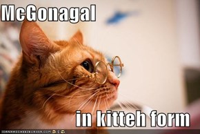 McGonagal  in kitteh form