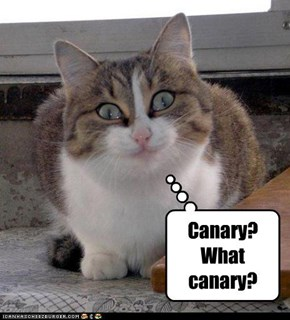 Canary? What canary?
