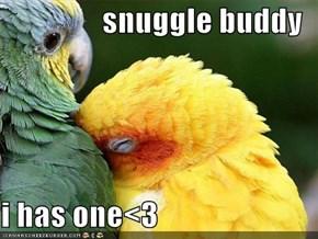 snuggle buddy  i has one<3