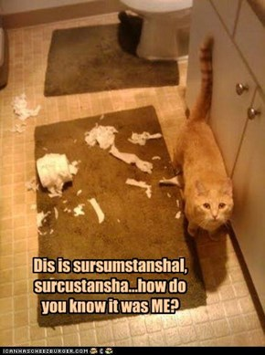 Dis is sursumstanshal, surcustansha...how do you know it was ME?