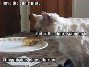 I have the same plate but with a depressing lack of the glorious cheeseburger
