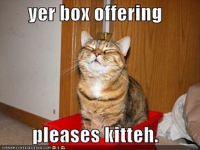 yer box offering  pleases kitteh.
