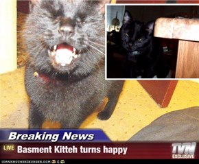 Breaking News - Basment Kitteh turns happy