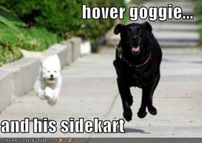 hover goggie...  and his sidekart