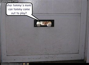 ohai tommy's mom! can tommy come out to play?