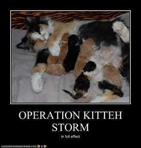 OPERATION KITTEH STORM