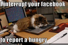 I interrupt your facebook  to report a hungry