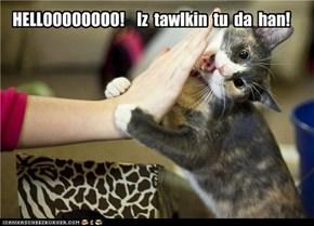 HELLOOOOOOOO!    Iz  tawlkin  tu  da  han!