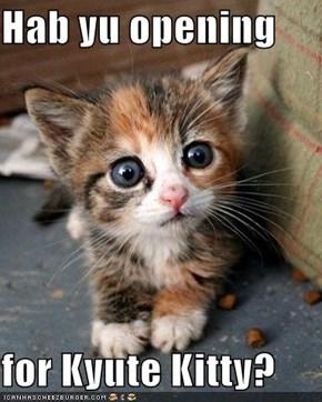 Hab yu opening  for Kyute Kitty?