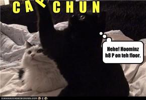 Basement Cat H8s Ur Capshuns