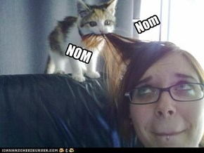 Kyoot Picture of Teh Day: I nom your hair