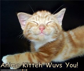 Anime Kitteh Wuvs You!