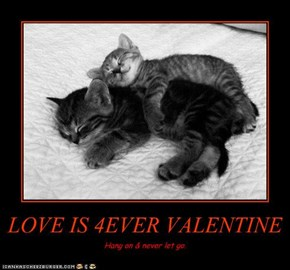 LOVE IS 4EVER VALENTINE