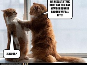WE NEEDS TA TALK BOUT DAT TOM KAT YEW BIN RUNNIN AROUND WIF ALL NITE!