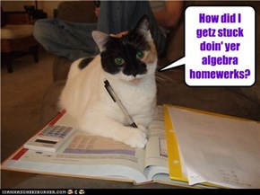 How did I getz stuck doin' yer algebra homewerks?