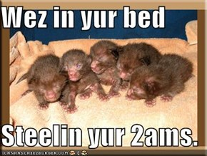 Wez in yur bed  Steelin yur 2ams.