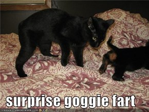 surprise goggie fart