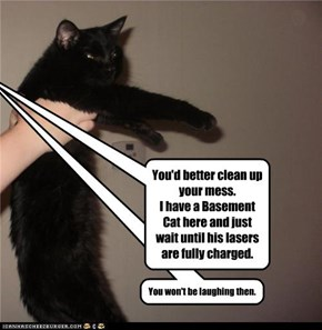 You'd better clean up your mess. I have a Basement Cat here and just wait until his lasers are fully charged.