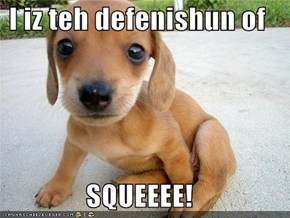 I iz teh defenishun of  SQUEEEE!