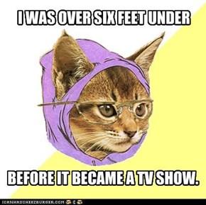 Hipster Kitteh: How Far Down?