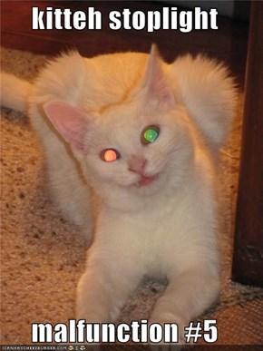 kitteh stoplight  malfunction #5