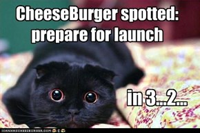 CheeseBurger spotted: prepare for launch