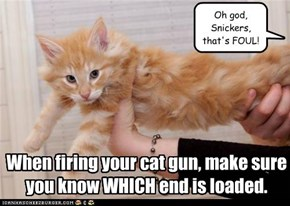 When firing your cat gun, make sure you know WHICH end is loaded.