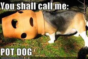 You shall call me:  POT DOG