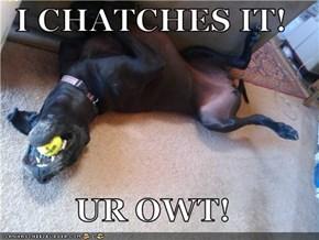I CHATCHES IT!  UR OWT!
