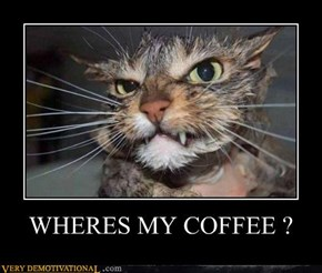 WHERES MY COFFEE ?
