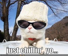 just chillin', yo...