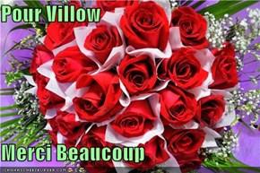 Pour Villow  Merci Beaucoup