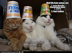 Well My Kats namez are: 1. soup Noodle 2. Curry 3. And Colbee