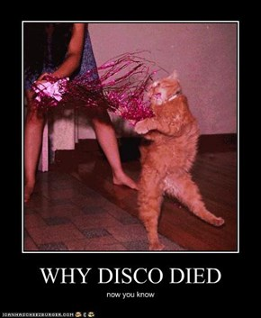WHY DISCO DIED