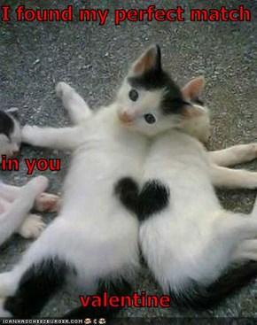 I found my perfect match in you valentine