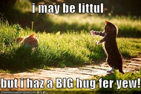 i may be littul  but i haz a BIG hug fer yew!