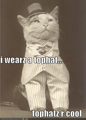 i wearz a tophat... tophatz r cool
