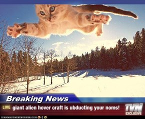 Breaking News - giant alien hover craft is ubducting your noms!
