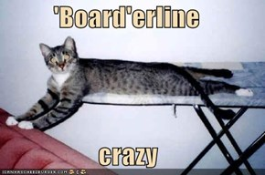 'Board'erline  crazy
