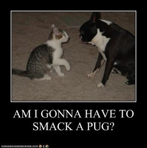 AM I GONNA HAVE TO SMACK A PUG?