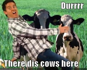 Durrrr  There dis cows here