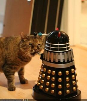 Cyoot Kitteh of teh Day: Exterminate?  Ai Exterminatez U, Weerd Robot Fing!