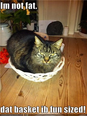 Im not fat.  dat basket ib fun sized!