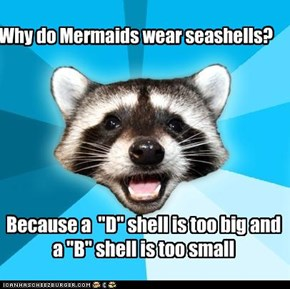 Why do Mermaids wear seashells?
