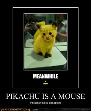 PIKACHU IS A MOUSE