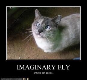 IMAGINURRY FLURRR