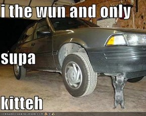 i the wun and only supa kitteh