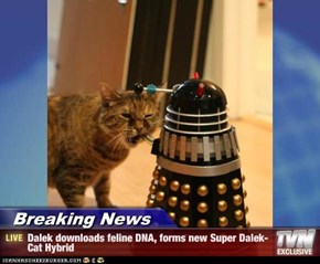 Breaking News - Dalek downloads feline DNA, forms new Super Dalek-Cat Hybrid