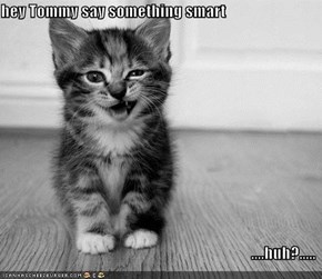 hey Tommy say something smart  ....huh?.....