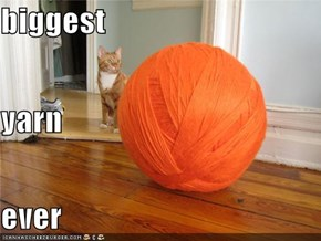 biggest yarn ever